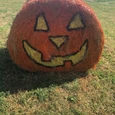 Halloween at Four Oaks Farm