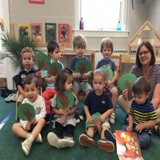 Montessori Toddler - K