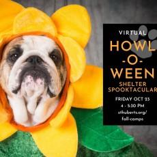 Virtual Howl-o-ween Shelter Spooktacular