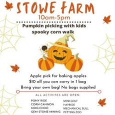Worcester, MA Events for Kids: Family Fun at Stowe Farm