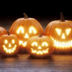 Things to do in Warwick, RI for Kids: Drive-By Pumpkin Spooktacular, Conimicut Point Park