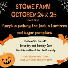 Worcester, MA Events for Kids: Halloween Family Fun at Stowe Farm