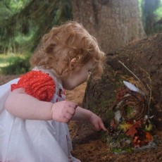 Things to do in Brookline-Norwood, MA: Fall Family Day: Fairies in the Foliage