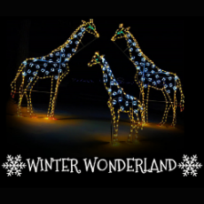 Things to do in Worcester, MA: Winter Wonderland