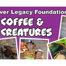 Things to do in Arlington, TX for Kids: Holiday Coffee & Creatures, River Legacy Living Science Center