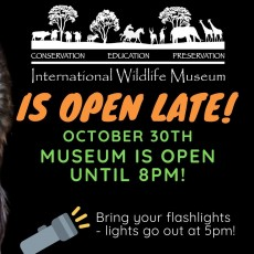Things to do in Casa Adobes-Oro Valley, AZ: Bring Your Flashlights - IWM is Open Late!