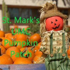Things to do in Casa Adobes-Oro Valley, AZ for Kids: St. Mark's UMC Pumpkin Patch!, St. Mark's UMC, Tucson