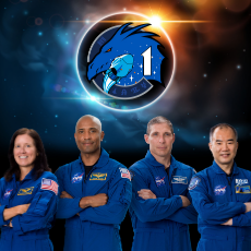 Charleston, SC Events for Kids: [National] NASA's SpaceX Crew-1 Launch