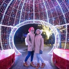 Things to do in Cleveland Southeast, OH: Wild Winter Lights (Walk Through or Drive Through)