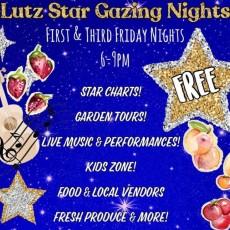 Lutz Star Gazing Night