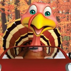Things to do in Westfield-Clark, NJ for Kids: 37th Annual Westfield Turkey Trot: Road Trip Edition, Town of Westfield