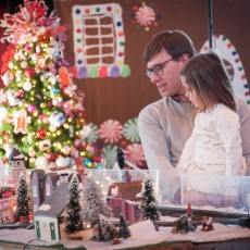 Reindeer Railway Evening Trains & Holiday Lights