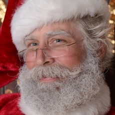 Things to do in Wesley Chapel-Lutz, FL for Kids: Virtual Sing-Along With Santa!, Land O' Lakes Branch Library