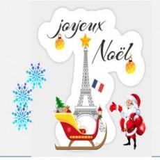 ZOOM Beginner French for Kids: Le Noel en France!