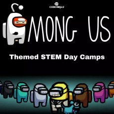Things to do in Madison, WI: STEM Camps