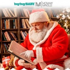 [National] Storytime with Santa