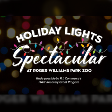 Drive-Through Holiday Lights Spectacular