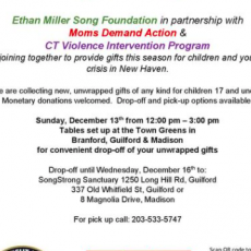 Holiday Youth Gift Drive