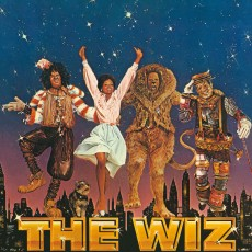 Things to do in Casa Adobes-Oro Valley, AZ: The Wiz
