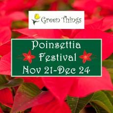 Poinsettia Festival
