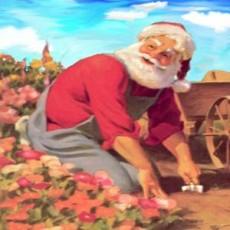 Santa At The Garden