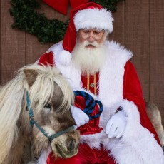 Things to do in West Cobb-East Paulding, GA for Kids: Santa at the Farm, McKenna Farms Therapy Services