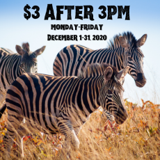 $3 after 3!