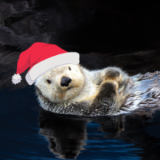 Things to do in Cape May County, NJ for Kids: Winter Wonderland at the Zoo, Cape May County Park & Zoo