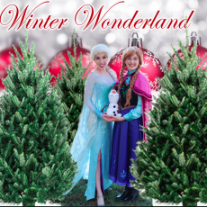Things to do in Charleston, SC for Kids: Winter Wonderland @ Boone Hall, Boone Hall Plantation