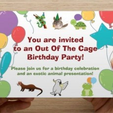 Out of the Cage Birthday Party!