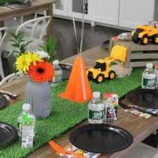 Themed Private Toddler Party