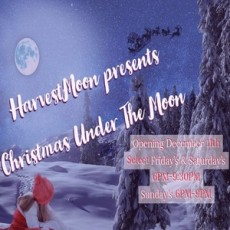 Christmas Under the Moon