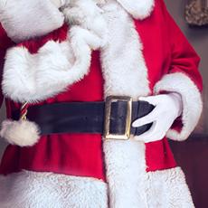 Visit Santa Virtually