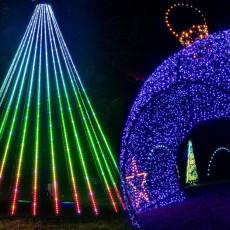 Winter Magic: A Drive-Thru Christmas Lights Experience