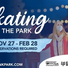 Things to do in Arlington Heights-Palatine IL: Skating in the Park