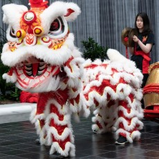Things to do in Hulafrog at Home for Kids: Lunar New Year Celebration, Smithsonian