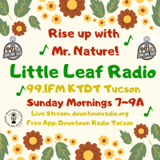 Little Leaf Radio with Mr. Nature