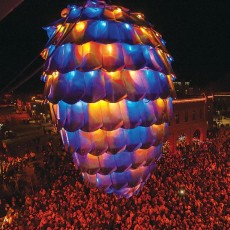 22nd Annual Great Pinecone Drop