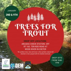 Trees for Trout