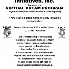 Things to do in Deltona, FL for Kids: Catalyst Virtual Dream Program for Boys, Catalyst Global Youth Initiatives, Inc.