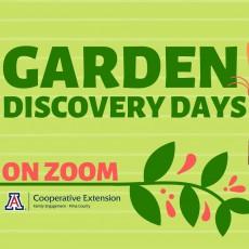 Things to do in Casa Adobes-Oro Valley, AZ: Garden Discovery Days