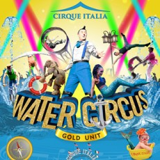 Things to do in Palm Beach Gardens, FL for Kids: Water Circus: Gold Unit, Cirque Italia