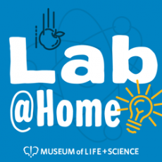 Durham-Chapel Hill, NC Events for Kids: Lab @Home from the Museum of Life & Science for Ages 5+: Black Excellence in Science