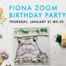 Cincinnati, OH Events for Kids: Fiona Zoom Birthday Party