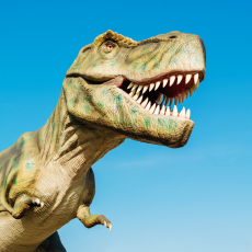 Things to do in Providence, RI: Dino Math Escape