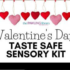 Valentine's Taste Safe Sensory Kits