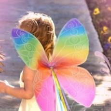 Learn To Make Fun Fairy Wings