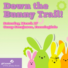Down the Bunny Trail