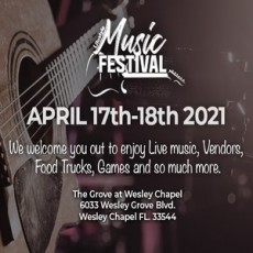 Things to do in Wesley Chapel-Lutz, FL for Kids: Lifestyle Music Festival, The Lesson Company