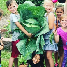 Nature Discovery Summer Camp (ages 4-12)